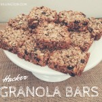 Hacker Granola Bars